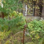 sculpture garden 4  EH