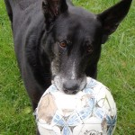 Darwin with soccer ball